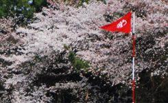 高麗川CC週日会員募集